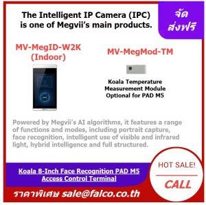MV-MegID-W2K